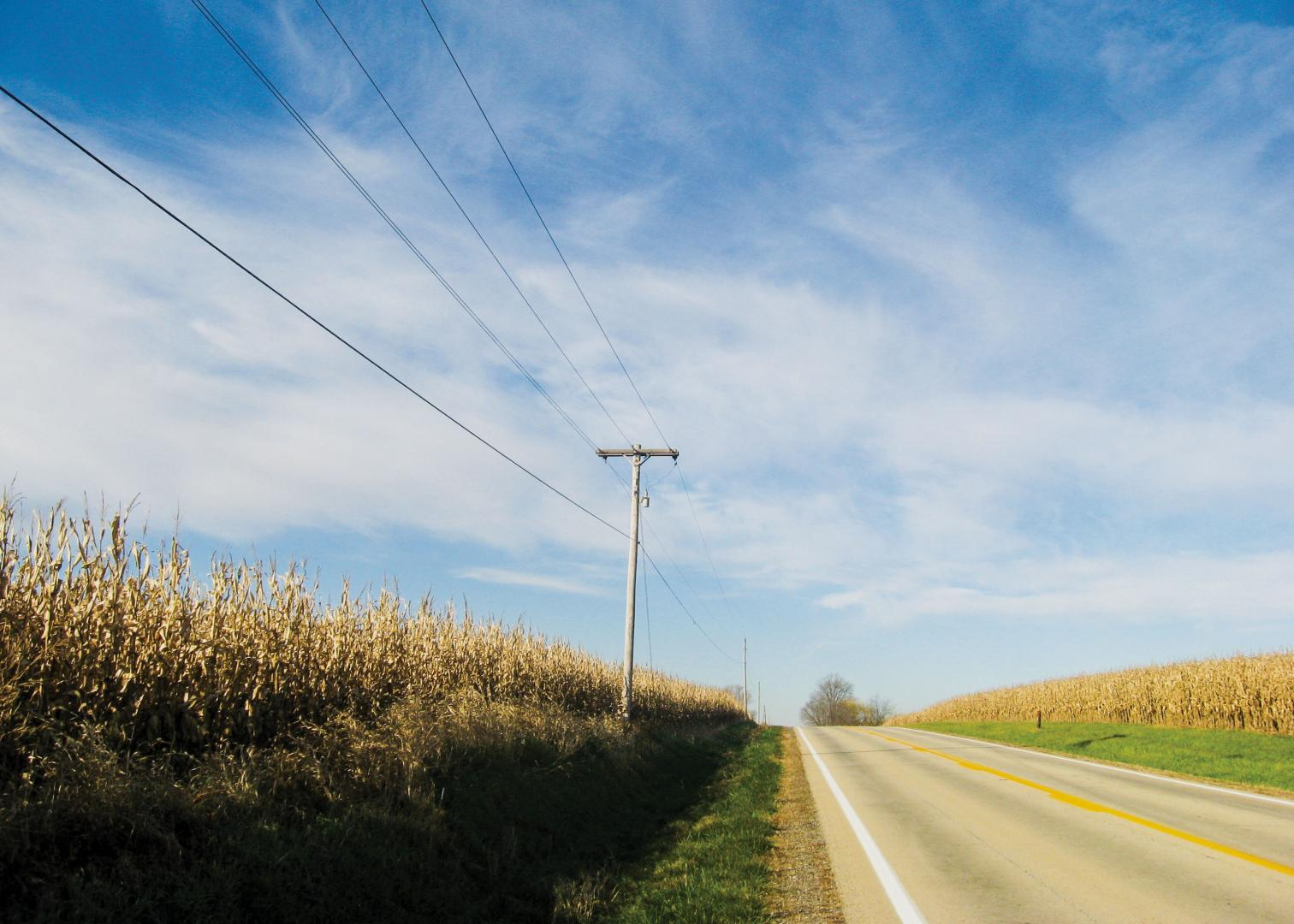 Cooperatives lines with a corn field